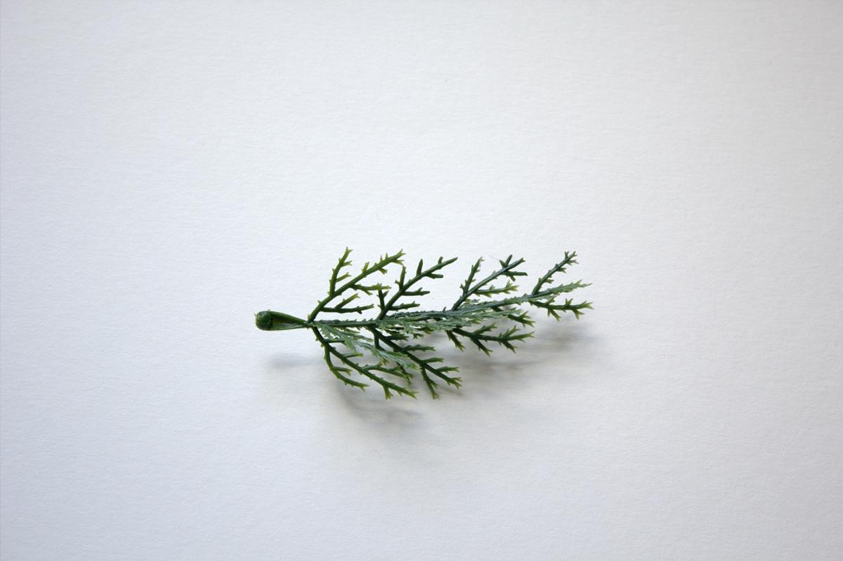 Fake Twig